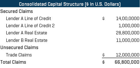 AMG Consolidated Capital Structure