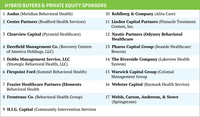 hybrid buyers and private equity sponsors