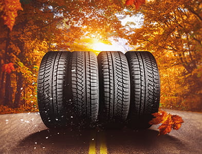 Tires in Fall